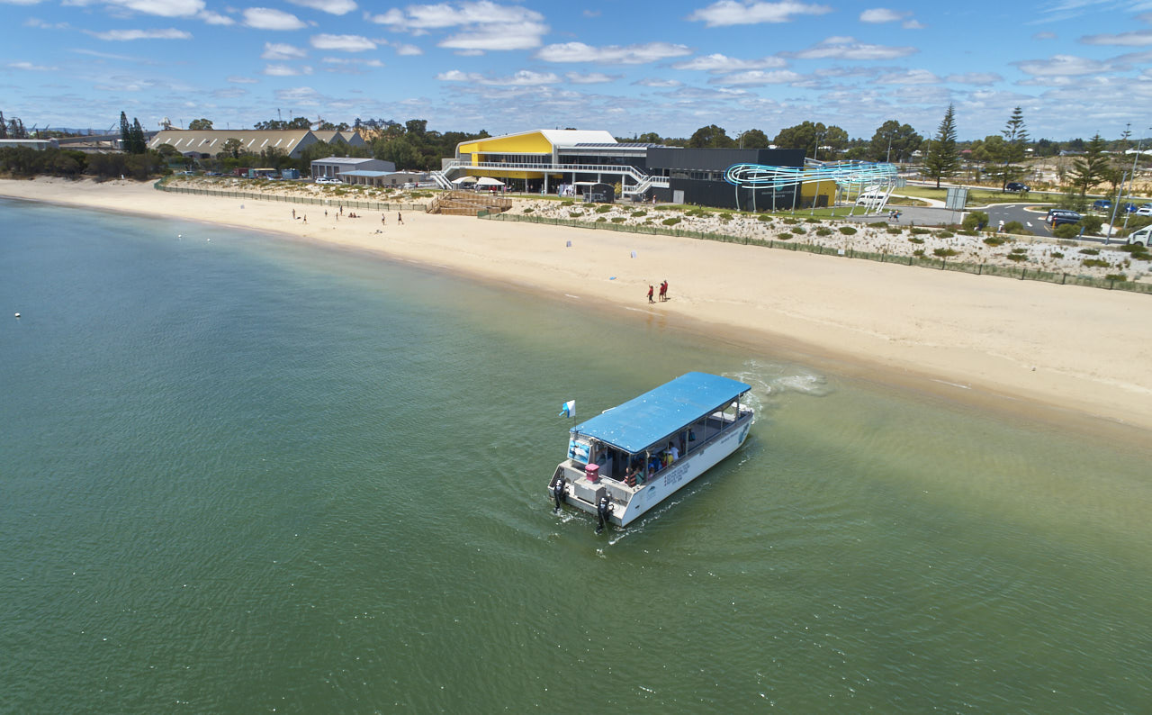 Dolphin Eco Cruise at Dolphin Discovery Centre, Bunbury Geographe, Australia's South West
