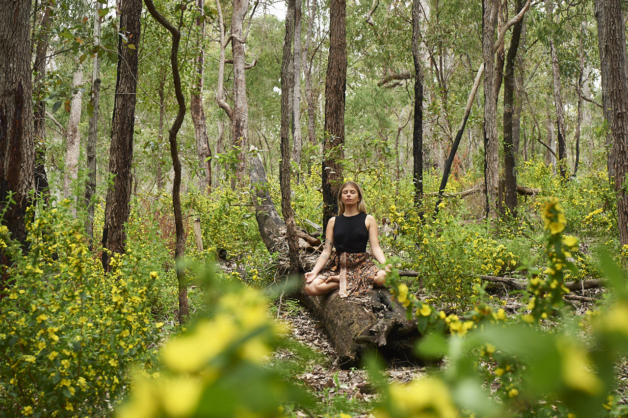 Forest bathing, Ferguson Valley, Australia's South West
