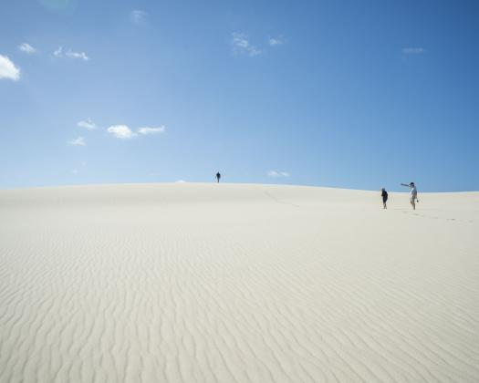 Desert like Yeagarup Dunes in the heart of the Southern Forest region