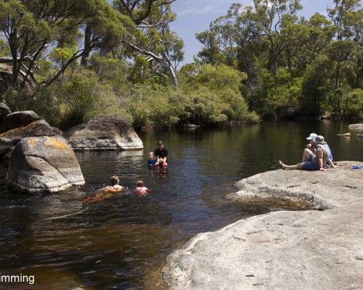 Swimming in the Frankland River