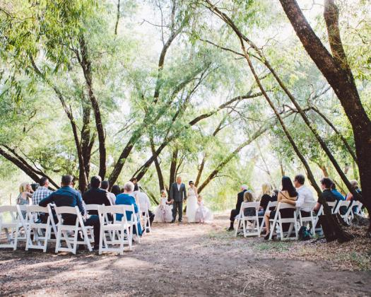 People gather outside for a wedding at Saint Aidan wines, seated on outdoor chairs with forest backdrop