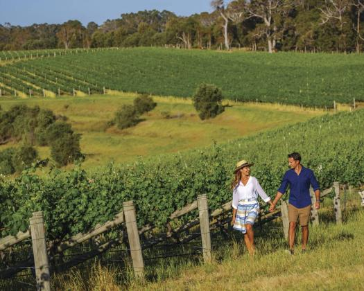 Walking through the vines at Wills Domain in Margaret River