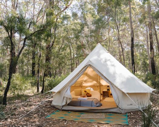 Glamping tent in the forest
