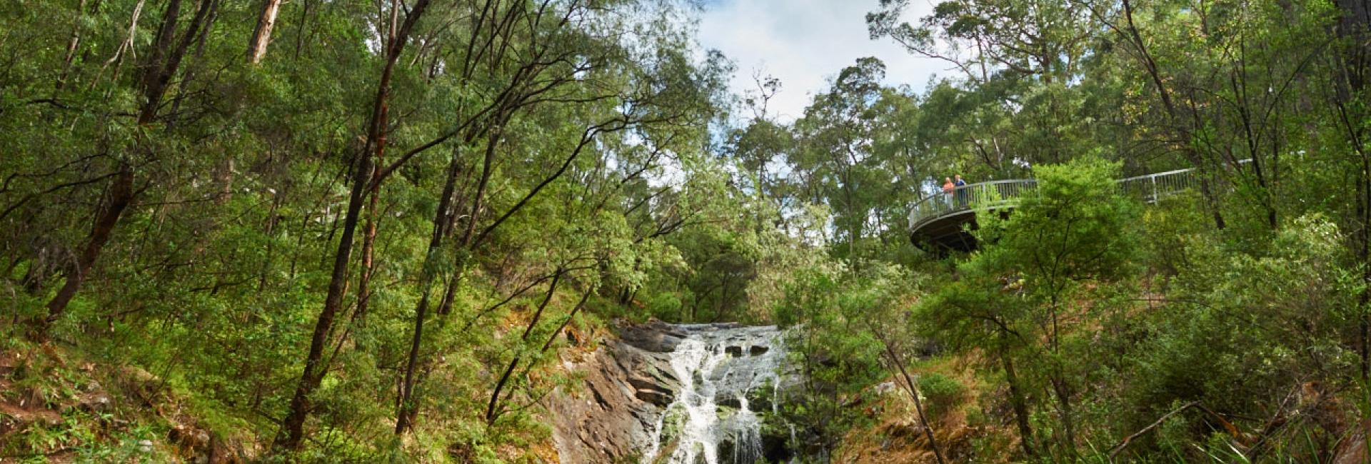 Beedelup Falls, Pemberton, Australia's South West