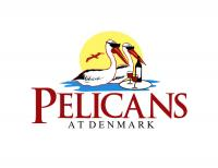 Pelicans at Denmark